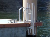 This FloatStep dock ladder was one of twenty installed at the new Palm Harbor Marina in West Palm Beach, FL.