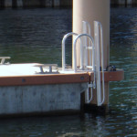 FloatStep® Ladder Installation at Palm Harbor Marina